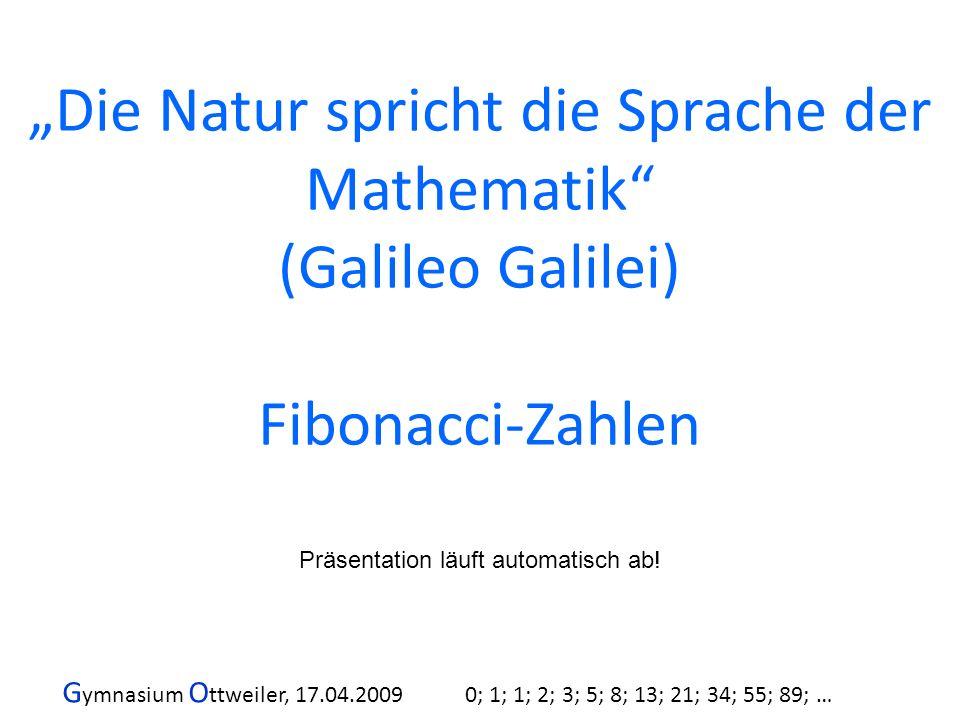 G ymnasium O ttweiler, 17.04.2009 0; 1; 1; 2; 3; 5; 8; 13; 21; 34; 55; 89; … Die Natur spricht die Sprache der Mathematik (Galileo Galilei) Fibonacci-