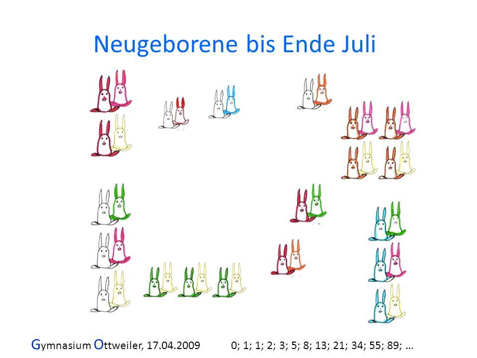 G ymnasium O ttweiler, 17.04.2009 0; 1; 1; 2; 3; 5; 8; 13; 21; 34; 55; 89; … Neugeborene bis Ende Juli