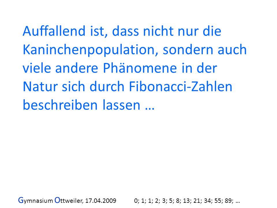 G ymnasium O ttweiler, 17.04.2009 0; 1; 1; 2; 3; 5; 8; 13; 21; 34; 55; 89; … Auffallend ist, dass nicht nur die Kaninchenpopulation, sondern auch viel