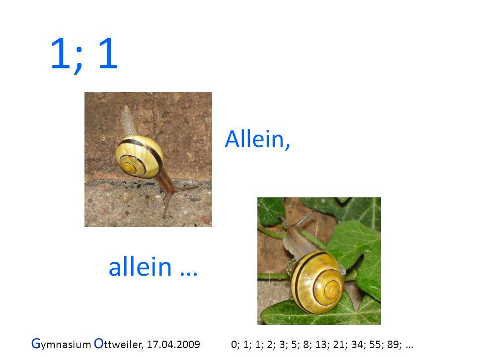 G ymnasium O ttweiler, 17.04.2009 0; 1; 1; 2; 3; 5; 8; 13; 21; 34; 55; 89; … Allein, allein … 1; 1