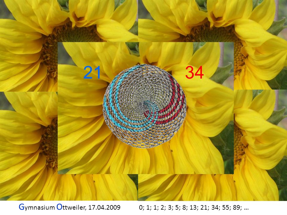 G ymnasium O ttweiler, 17.04.2009 0; 1; 1; 2; 3; 5; 8; 13; 21; 34; 55; 89; … 21 34 2134