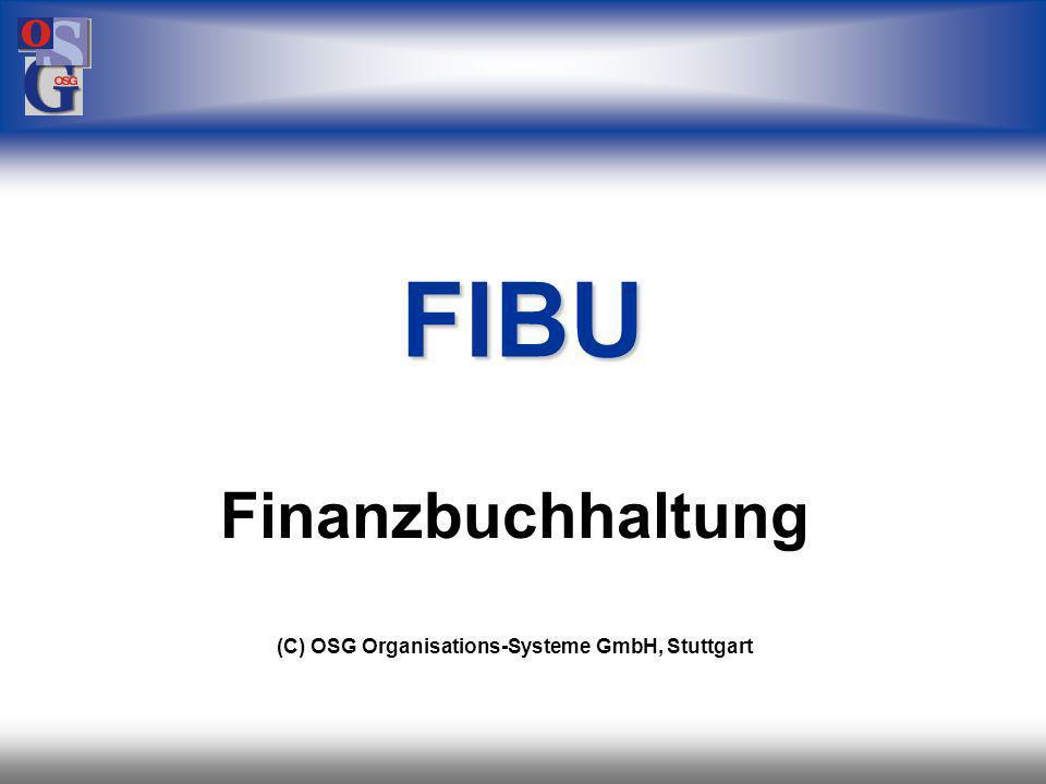 OSG 41 Buchhaltung EUR Rechnung GBP USD Fremdwährung Zahlungseingang in jeder Währung