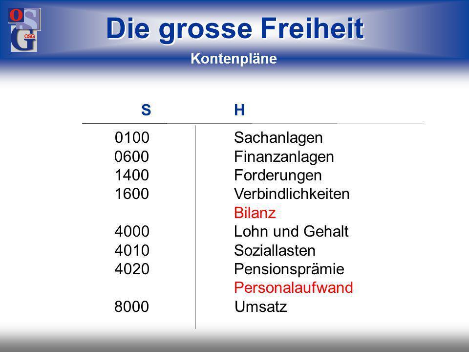 OSG 17 Buchhaltung dezentral zentral Die grosse Freiheit egal, wie Ihre IT strukturiert ist