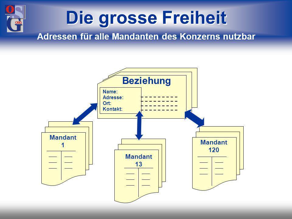 OSG 21 Name: Adresse: Ort: Kontakt: Beziehung Debitorennr.