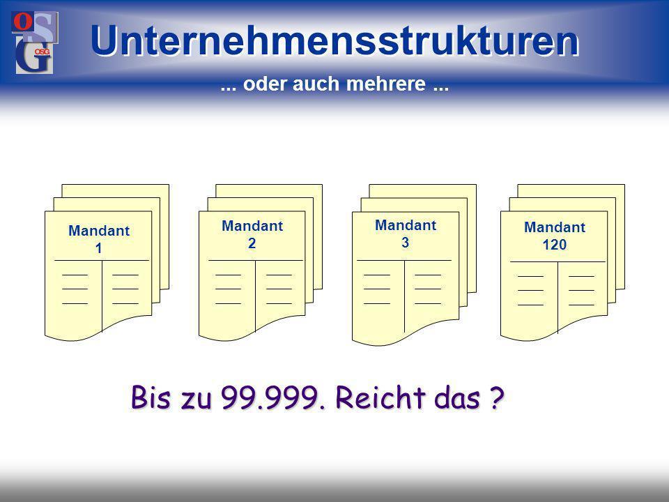 OSG 28 Buchhaltung Unternehmensstrukturen Sie können einen Mandanten haben...