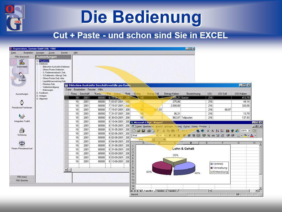 OSG 9 Die Bedienung Cut + Paste - und schon sind Sie in EXCEL
