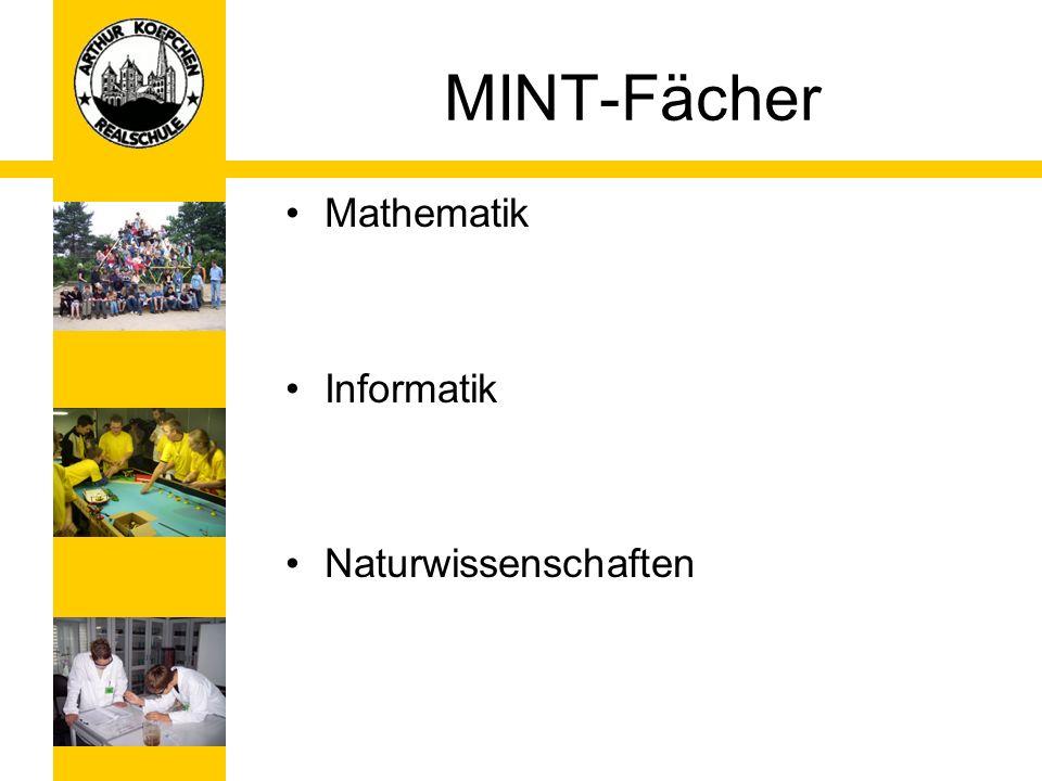 NW-AG Experimental AG Über den Unterrichtsstoff hinausgehend Wettbewerb Chemie entdecken