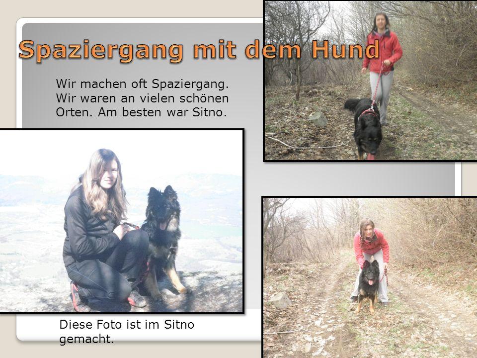 Wir machen oft Spaziergang. Wir waren an vielen schönen Orten. Am besten war Sitno. Diese Foto ist im Sitno gemacht.