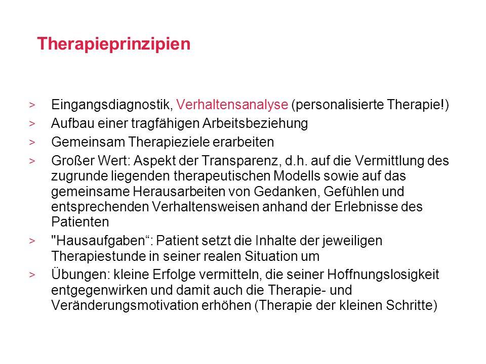 Therapieprinzipien Eingangsdiagnostik, Verhaltensanalyse (personalisierte Therapie!) Aufbau einer tragfähigen Arbeitsbeziehung Gemeinsam Therapieziele