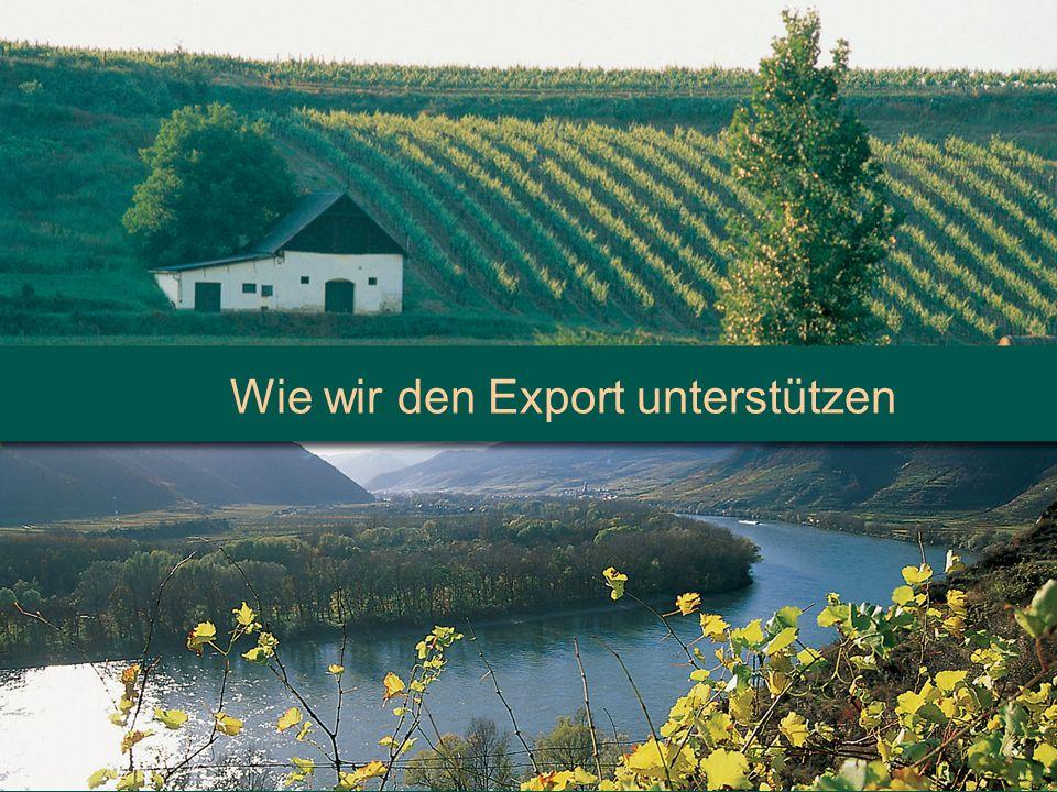 Wie wir den Export unterstützen