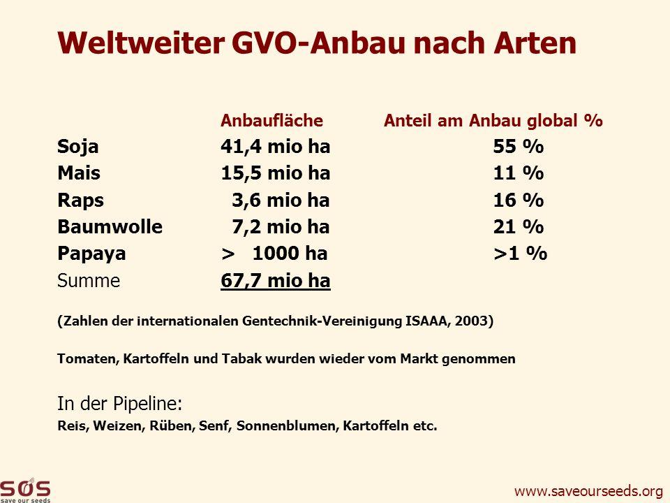 www.saveourseeds.org Weltweiter GVO-Anbau nach Arten Anbaufläche Anteil am Anbau global % Soja41,4 mio ha55 % Mais15,5 mio ha11 % Raps 3,6 mio ha16 %