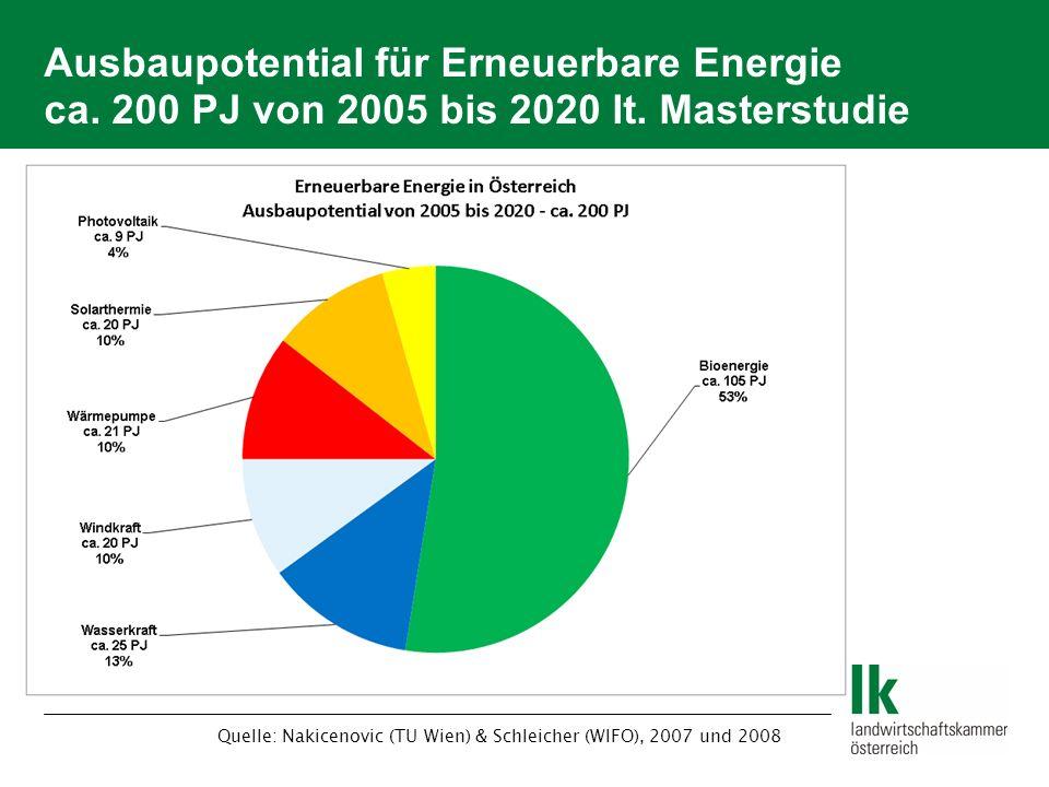 Ausbaupotential für Erneuerbare Energie ca. 200 PJ von 2005 bis 2020 lt. Masterstudie Quelle: Nakicenovic (TU Wien) & Schleicher (WIFO), 2007 und 2008