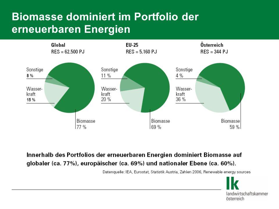 Biomasse dominiert im Portfolio der erneuerbaren Energien 8 % 15 %