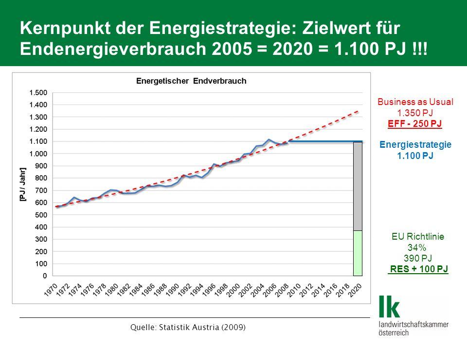 Kernpunkt der Energiestrategie: Zielwert für Endenergieverbrauch 2005 = 2020 = 1.100 PJ !!! Business as Usual 1.350 PJ EFF - 250 PJ Energiestrategie 1