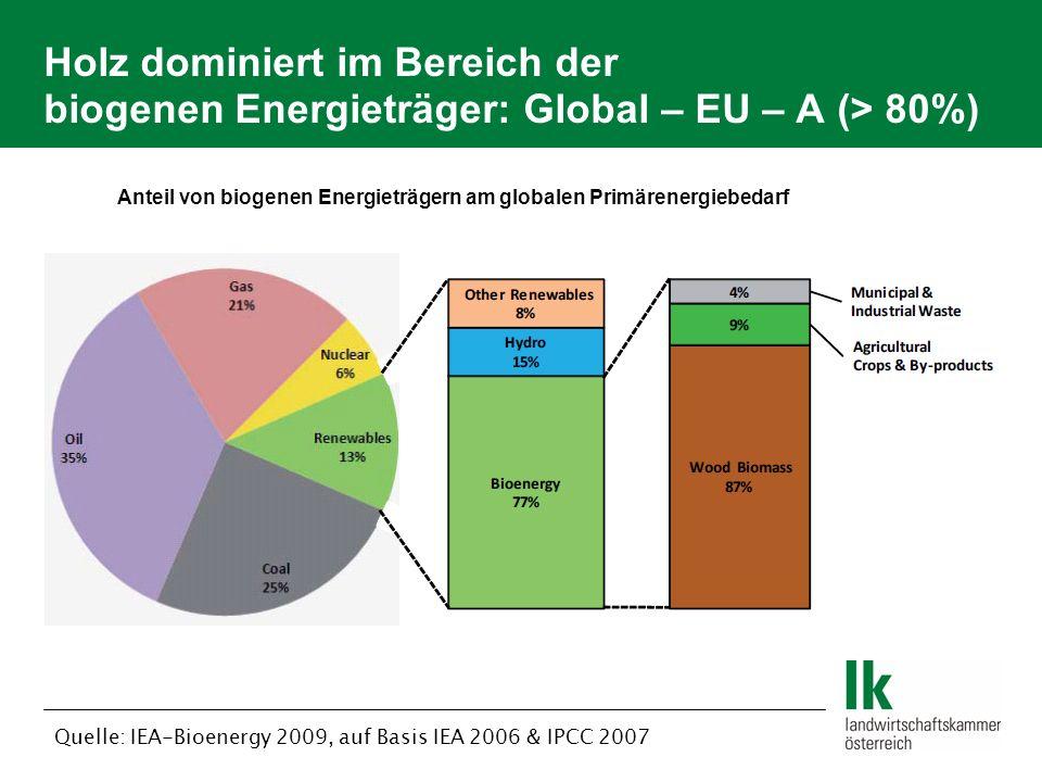 Holz dominiert im Bereich der biogenen Energieträger: Global – EU – A (> 80%) Anteil von biogenen Energieträgern am globalen Primärenergiebedarf Quelle: IEA-Bioenergy 2009, auf Basis IEA 2006 & IPCC 2007