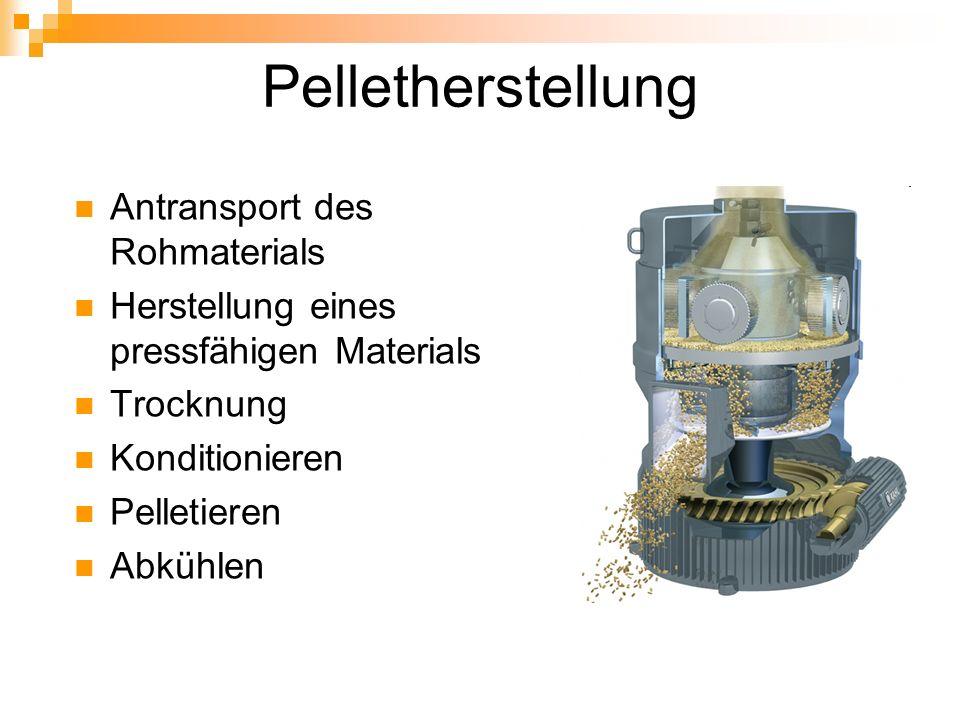 Pelletherstellung Antransport des Rohmaterials Herstellung eines pressfähigen Materials Trocknung Konditionieren Pelletieren Abkühlen