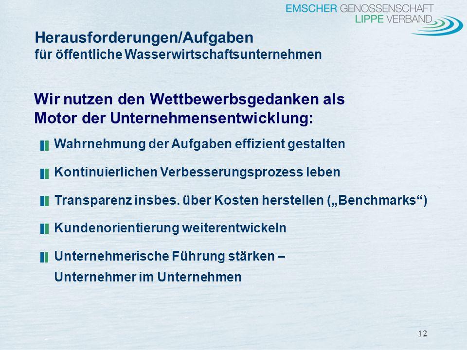 12 Herausforderungen/Aufgaben für öffentliche Wasserwirtschaftsunternehmen Wahrnehmung der Aufgaben effizient gestalten Kontinuierlichen Verbesserungs