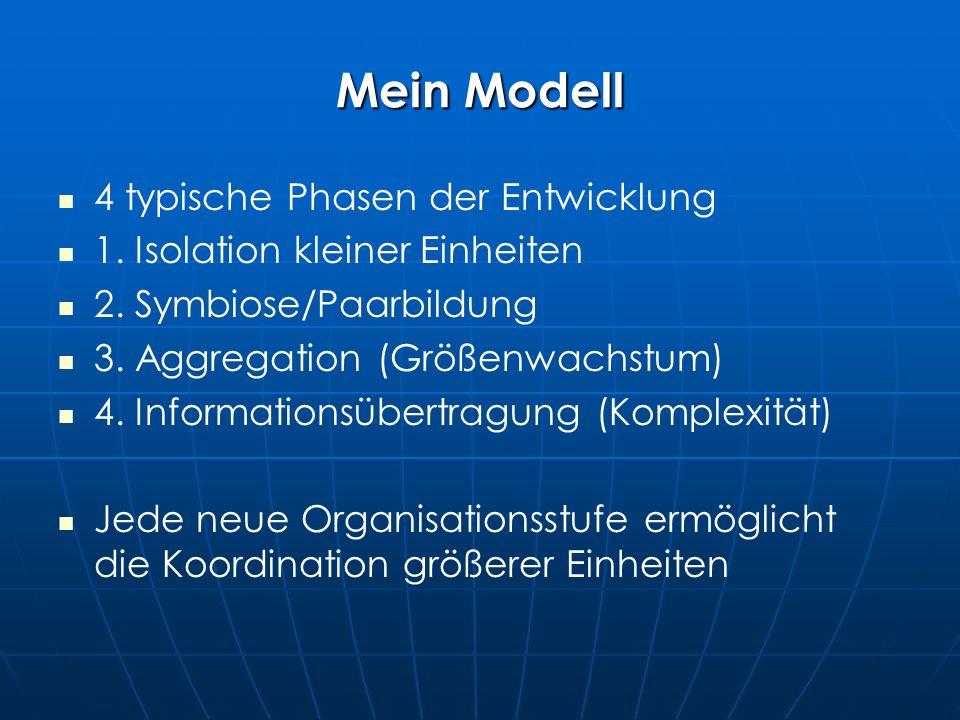 Mein Modell 4 typische Phasen der Entwicklung 1. Isolation kleiner Einheiten 2.