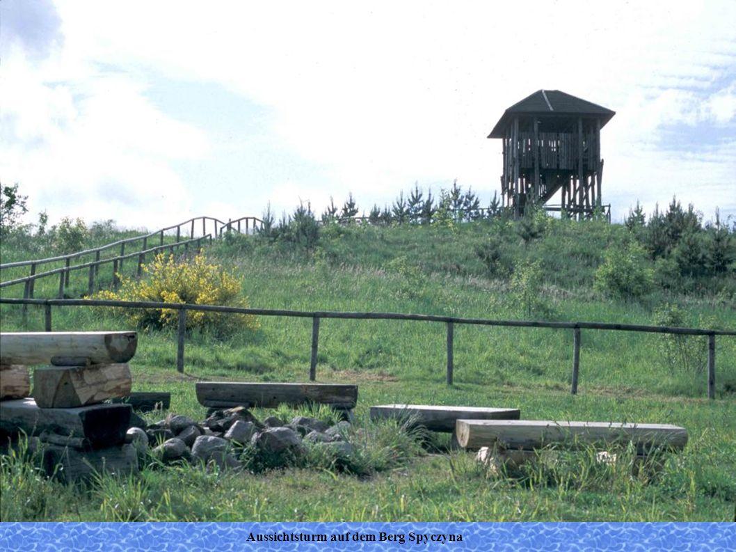 Aussichtsturm auf dem Berg Spyczyna