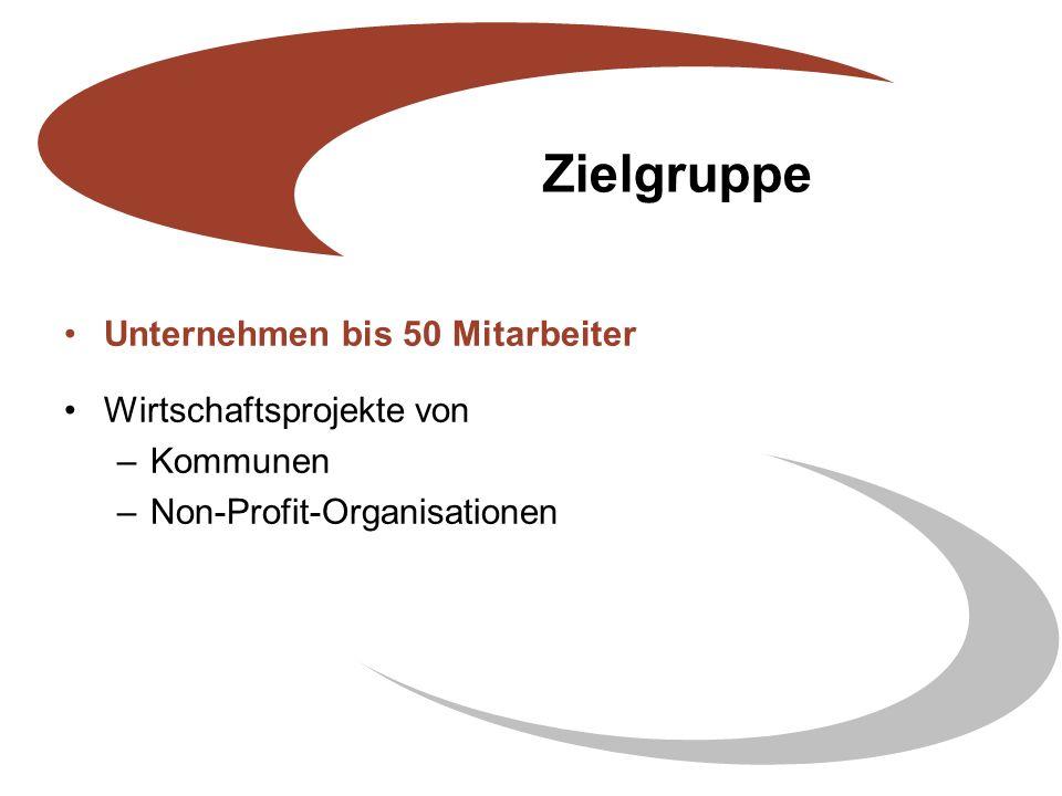 Zielgruppe Unternehmen bis 50 Mitarbeiter Wirtschaftsprojekte von –Kommunen –Non-Profit-Organisationen