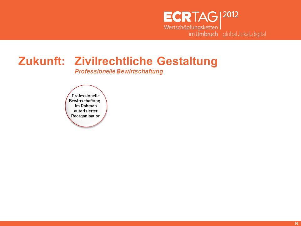 16 Zukunft:Zivilrechtliche Gestaltung Professionelle Bewirtschaftung Professionelle Bewirtschaftung im Rahmen autorisierter Reorganisation Professione