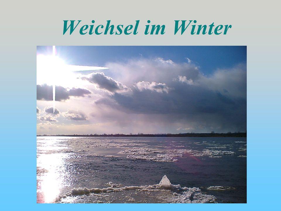 Weichsel im Winter