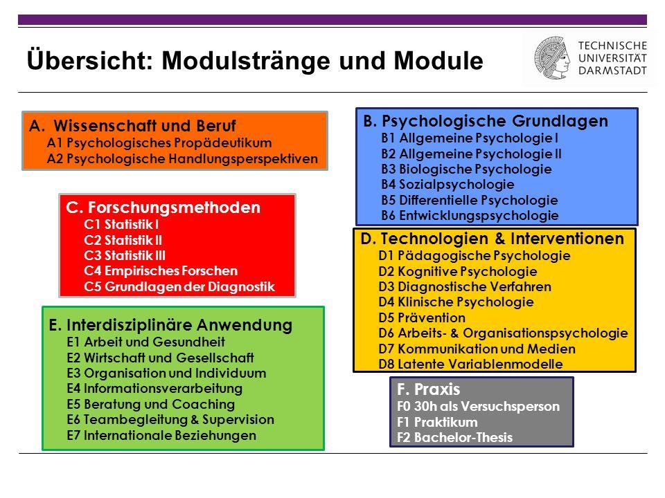 Übersicht: Modulstränge und Module A.Wissenschaft und Beruf A1 Psychologisches Propädeutikum A2 Psychologische Handlungsperspektiven C. Forschungsmeth