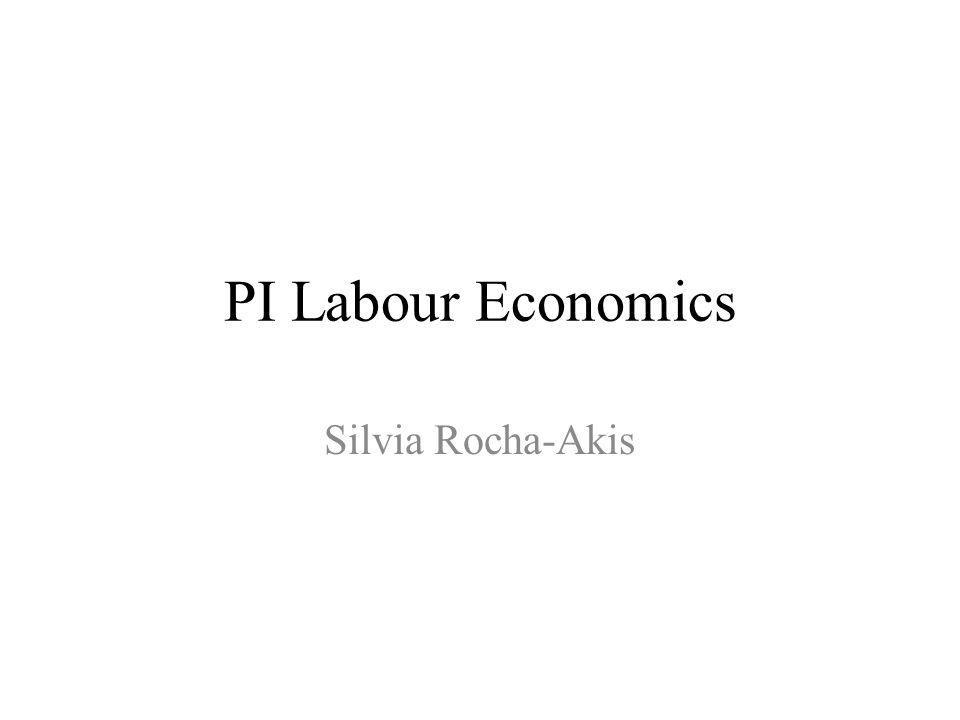PI-Labour Economics: Warum sinnvoll .