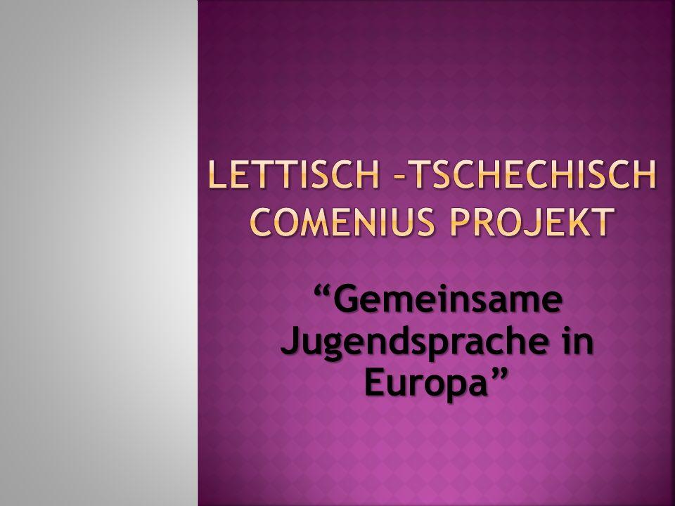 Gemeinsame Jugendsprache in EuropaGemeinsame Jugendsprache in Europa