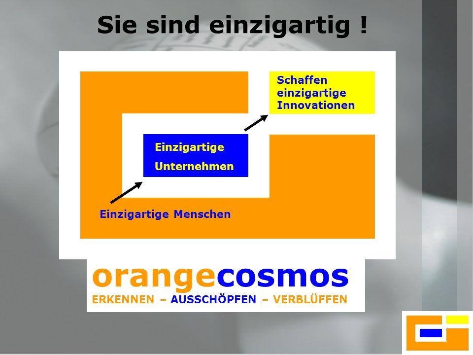 8 orangecosmos ERKENNEN – AUSSCHÖPFEN – VERBLÜFFEN Einzigartige Menschen Einzigartige Unternehmen Schaffen einzigartige Innovationen Sie sind einzigar