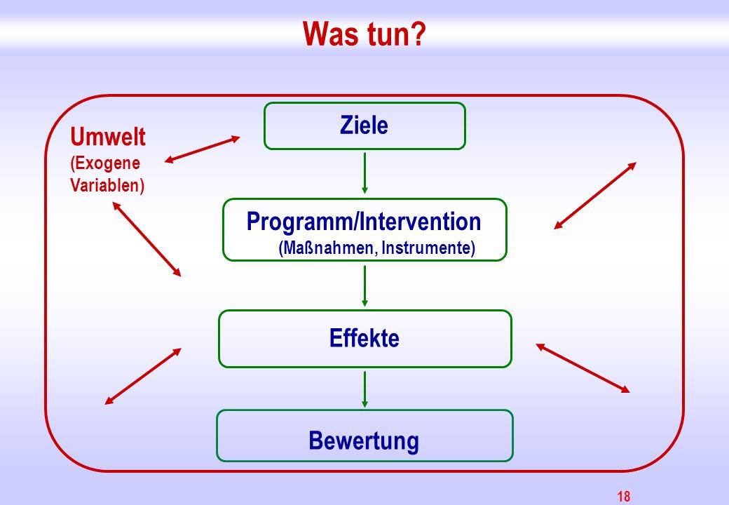18 Was tun? Ziele Programm/Intervention (Maßnahmen, Instrumente) Effekte Bewertung Umwelt (Exogene Variablen)