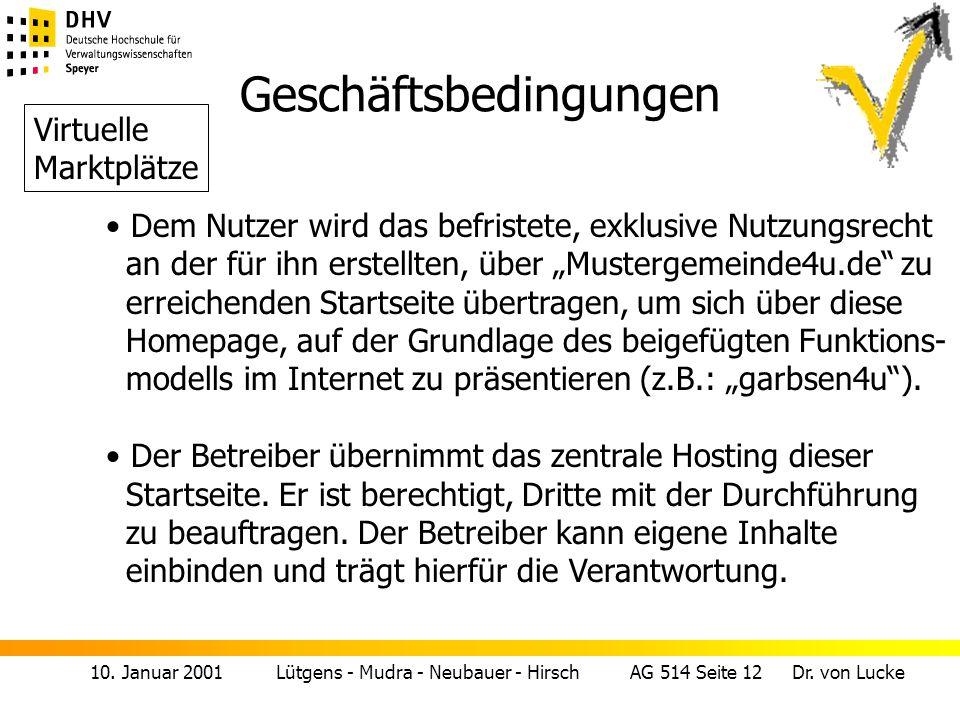 10. Januar 2001 Lütgens - Mudra - Neubauer - Hirsch AG 514 Seite 12 Dr. von Lucke Geschäftsbedingungen Dem Nutzer wird das befristete, exklusive Nutzu