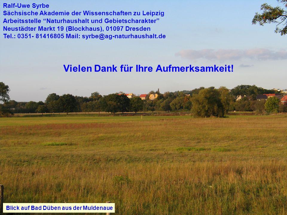 Ralf-Uwe Syrbe Vielen Dank für Ihre Aufmerksamkeit! Blick auf Bad Düben aus der Muldenaue Ralf-Uwe Syrbe Sächsische Akademie der Wissenschaften zu Lei