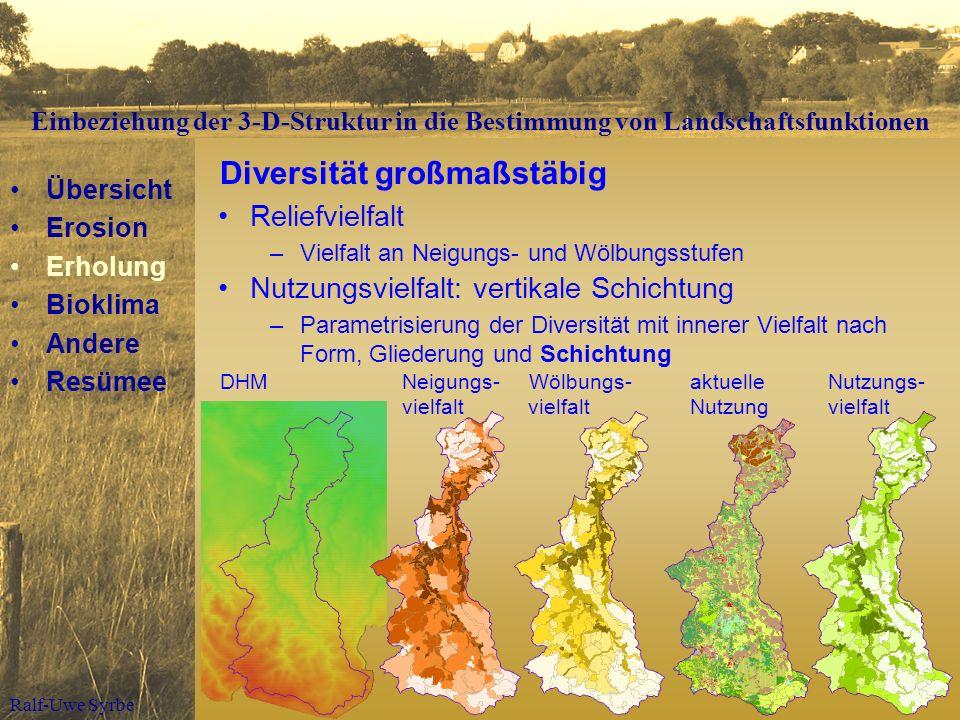 Ralf-Uwe Syrbe Reliefvielfalt –Vielfalt an Neigungs- und Wölbungsstufen Diversität großmaßstäbig Nutzungsvielfalt: vertikale Schichtung –Parametrisier
