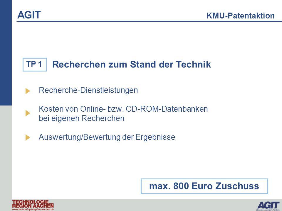 Recherchen zum Stand der Technik Recherche-Dienstleistungen Kosten von Online- bzw. CD-ROM-Datenbanken bei eigenen Recherchen Auswertung/Bewertung der