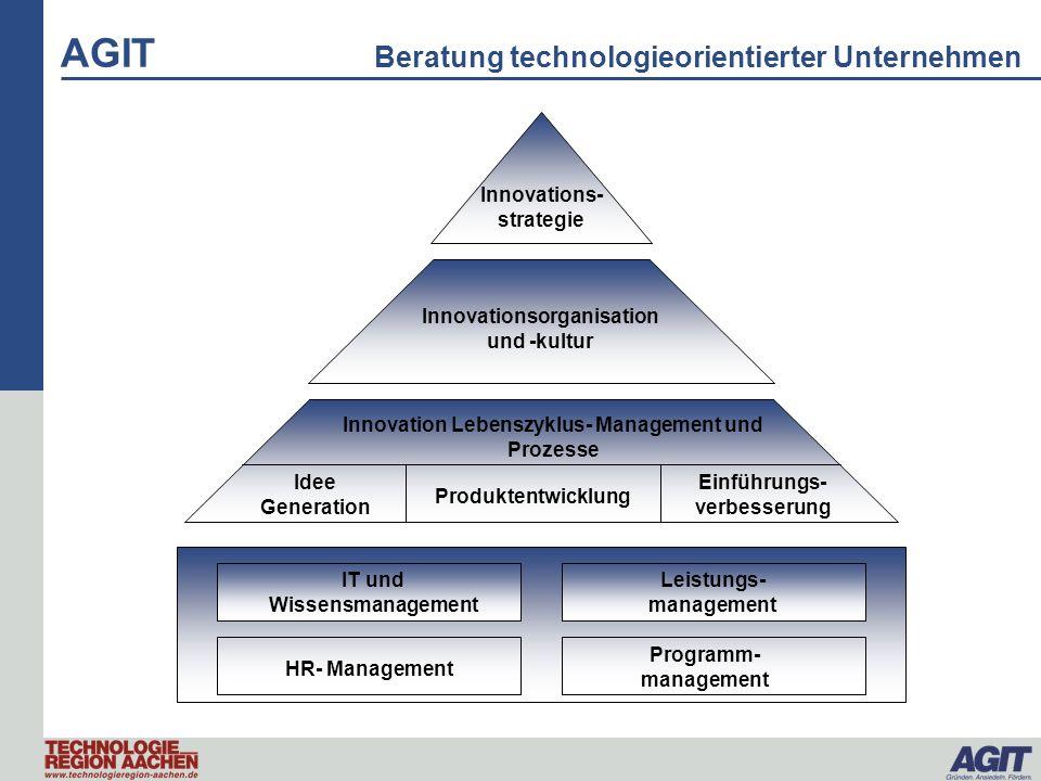 AGIT Beratung technologieorientierter Unternehmen Welche Felder haben einen Einfluss auf die Innovationsfähigkeit eines Unternehmens.