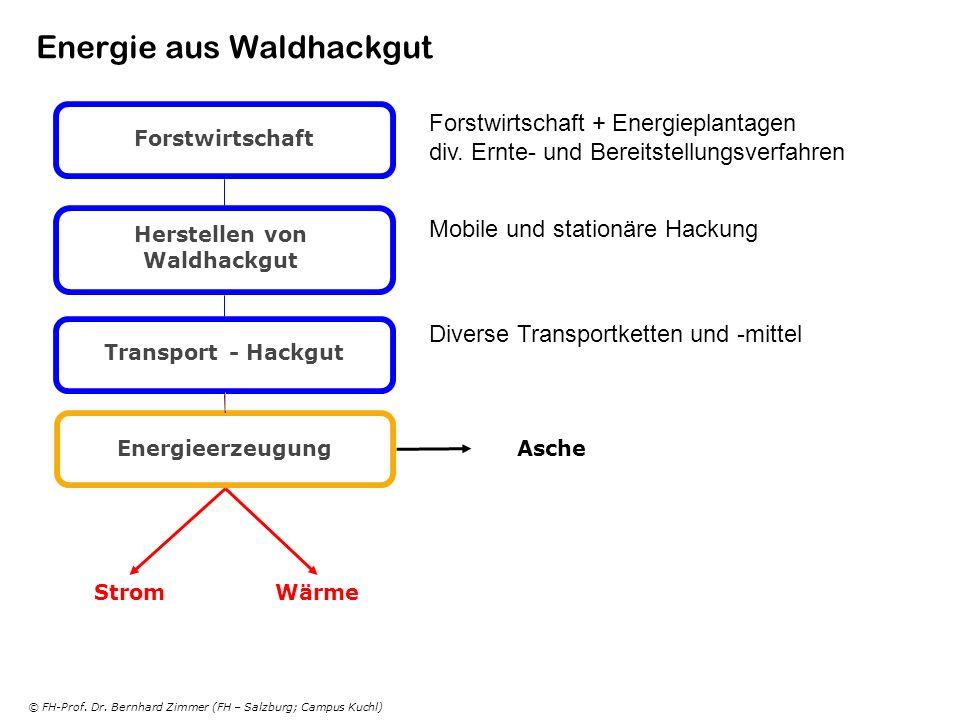 © FH-Prof. Dr. Bernhard Zimmer (FH – Salzburg; Campus Kuchl) Energie aus Waldhackgut Forstwirtschaft Herstellen von Waldhackgut Transport - Hackgut En