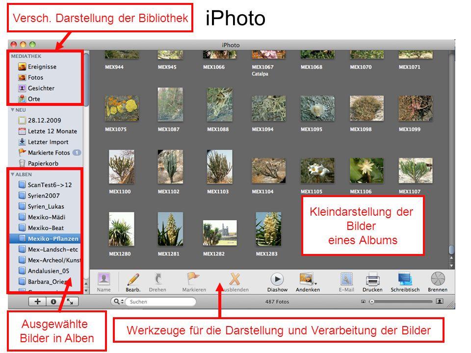 iPhoto Versch. Darstellung der Bibliothek Ausgewählte Bilder in Alben Werkzeuge für die Darstellung und Verarbeitung der Bilder Kleindarstellung der B