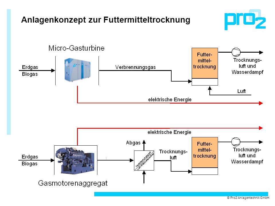 Anlagenkonzept zur Futtermitteltrocknung © Pro2 Anlagentechnik GmbH