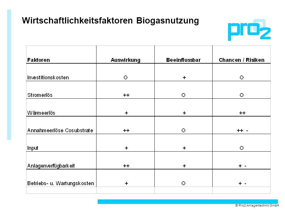 Wirtschaftlichkeitsfaktoren Biogasnutzung © Pro2 Anlagentechnik GmbH