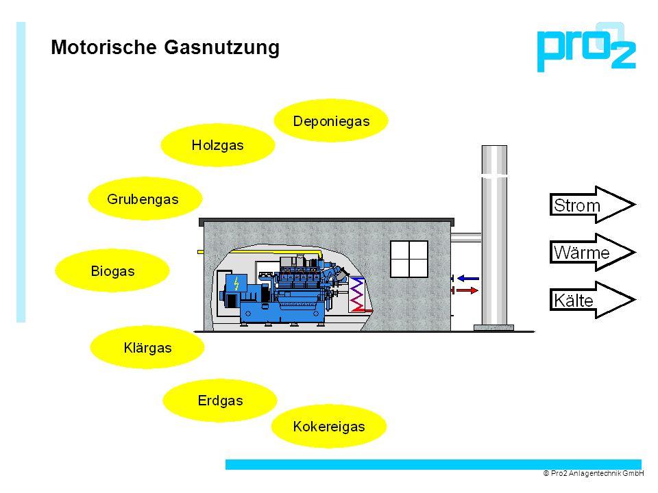 Container-BHKW mit integrierter Gasaufbereitung und Notfackel © Pro2 Anlagentechnik GmbH