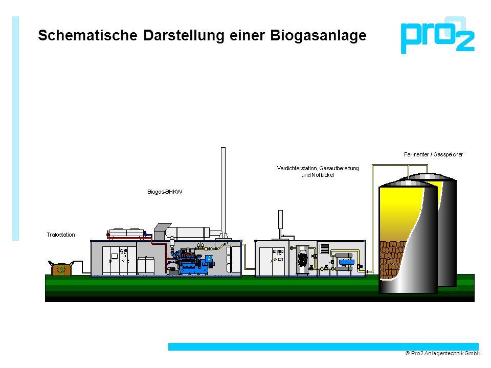 Biogas-BHKW mit integrierter Verdichterstation und Notfackelanlage © Pro2 Anlagentechnik GmbH