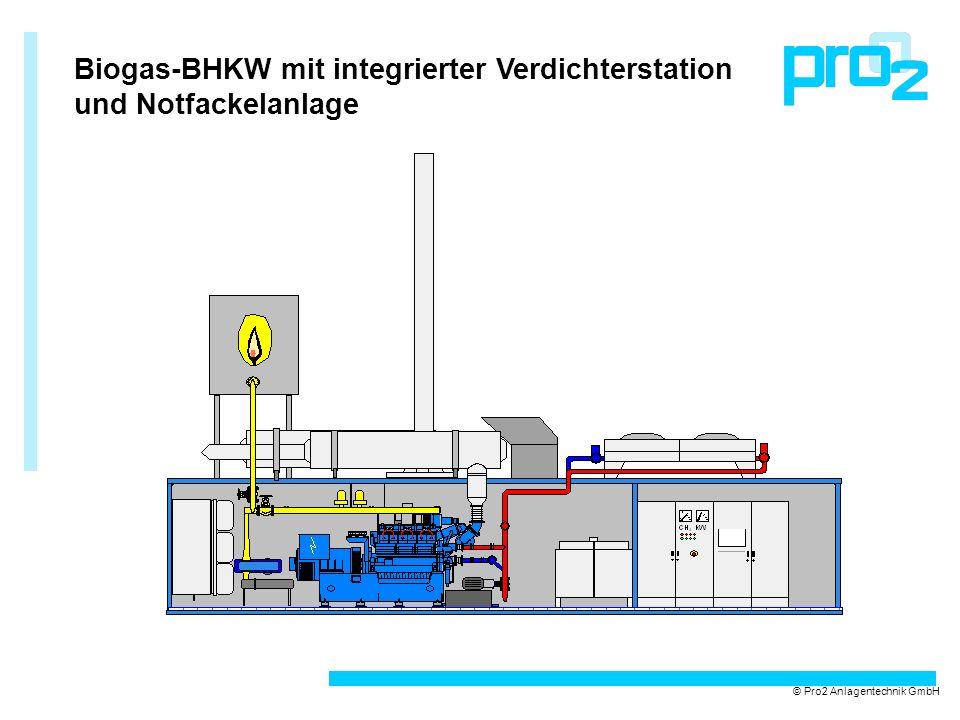 Verladung eines BHKW-Containeraggregats © Pro2 Anlagentechnik GmbH