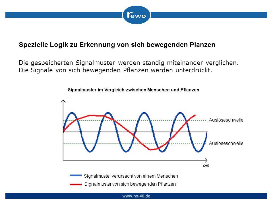 Die gespeicherten Signalmuster werden ständig miteinander verglichen. Die Signale von sich bewegenden Pflanzen werden unterdrückt. Signalmuster im Ver