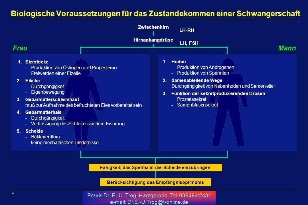 3 Praxis Dr. E.-U. Trog, Harzgerode, Tel. 039484/2431 e-mail: Dr.E.-U.Trog@t-online.de Biologische Voraussetzungen für das Zustandekommen einer Schwan