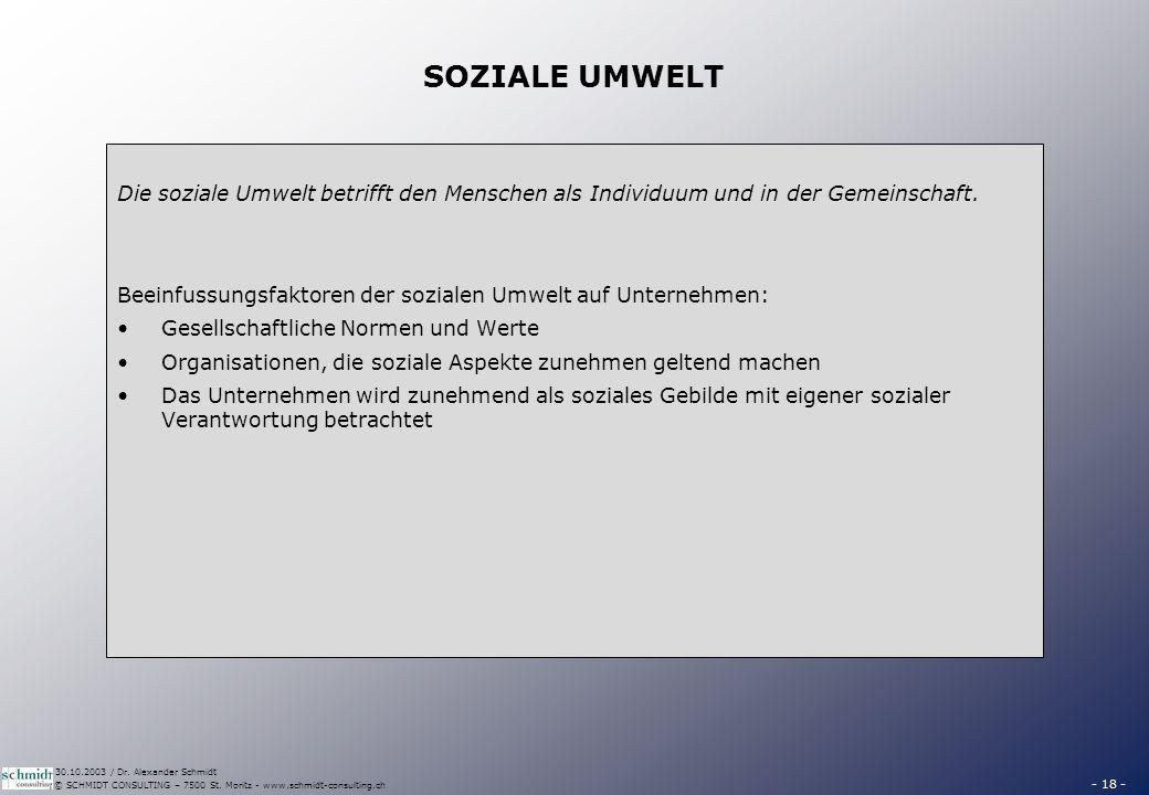 - 18 - © SCHMIDT CONSULTING – 7500 St. Moritz - www.schmidt-consulting.ch 30.10.2003 / Dr. Alexander Schmidt SOZIALE UMWELT Die soziale Umwelt betriff