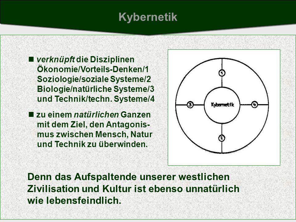 verknüpft die Disziplinen Ökonomie/Vorteils-Denken/1 Soziologie/soziale Systeme/2 Biologie/natürliche Systeme/3 und Technik/techn. Systeme/4 zu einem