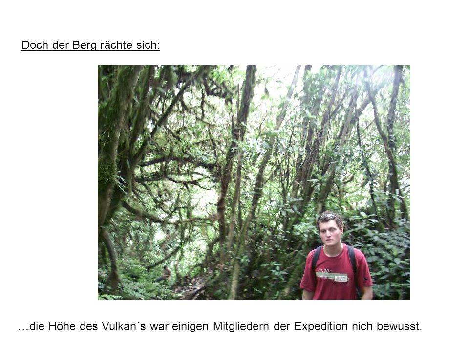 Doch der Berg rächte sich: …die Höhe des Vulkan´s war einigen Mitgliedern der Expedition nich bewusst.