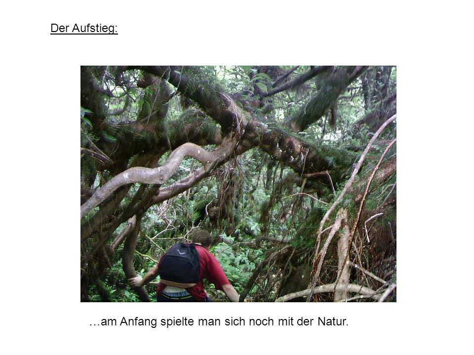…am Anfang spielte man sich noch mit der Natur. Der Aufstieg: