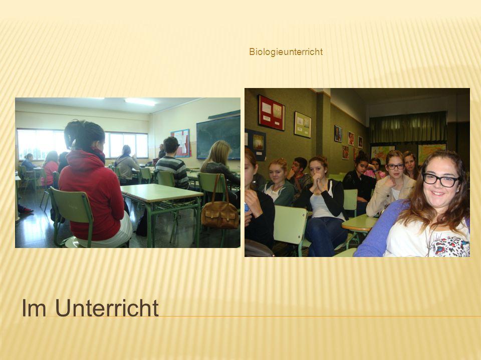Die Schuldirektorin Hier sind der Deutschlehrer aus Spanien und der Englischlehrer aus Deutschland